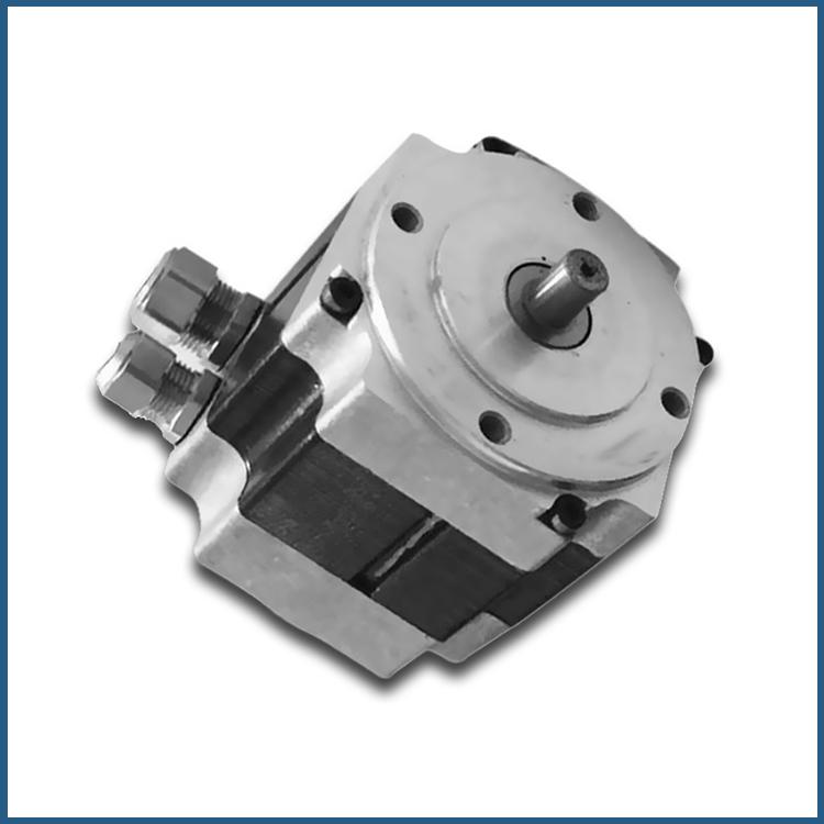 24V High Speed Low Torque Brushless DC Motor - Buy 24V DC Motor